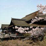 【最新版】行ってよかった・行きたい日本の世界遺産ランキング!