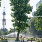 北海道おすすめ観光スポットランキングTOP10!人気の観光名所は?